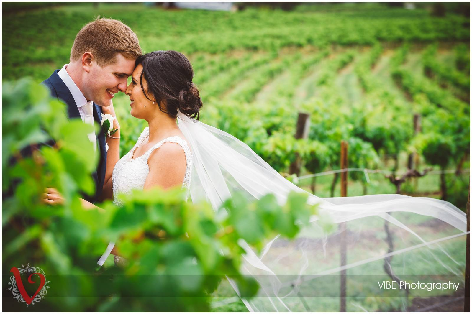 Hunter Valley Gardens Wedding VIBE Photography (17)